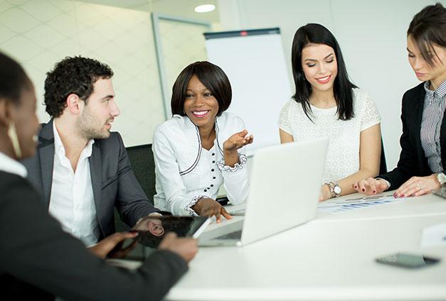 Director Program Management